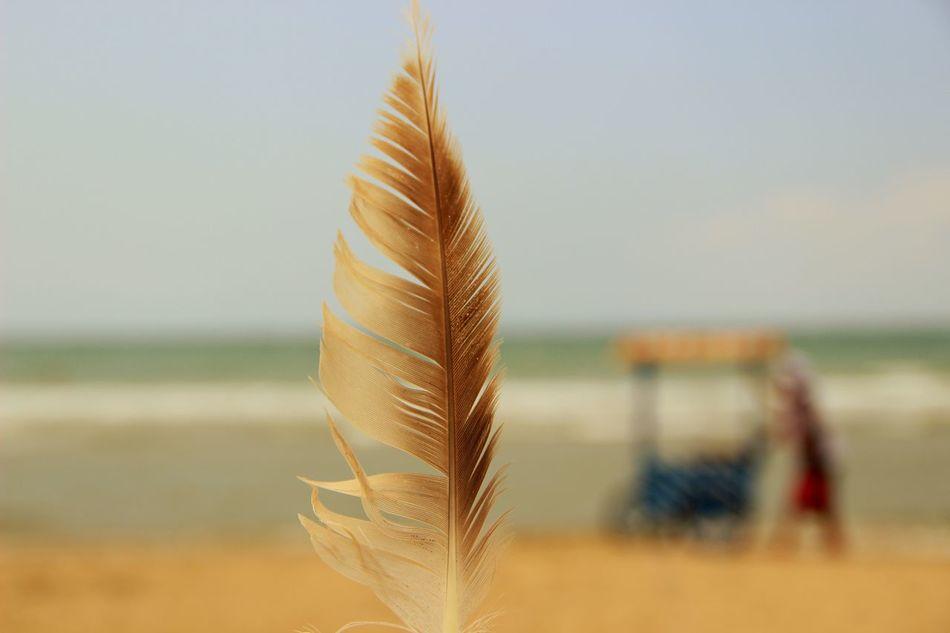 EyeEm Best Shots Seaside Blue Sea Sun EyeEm Swimming Taking Photos Enjoying Life Relaxing