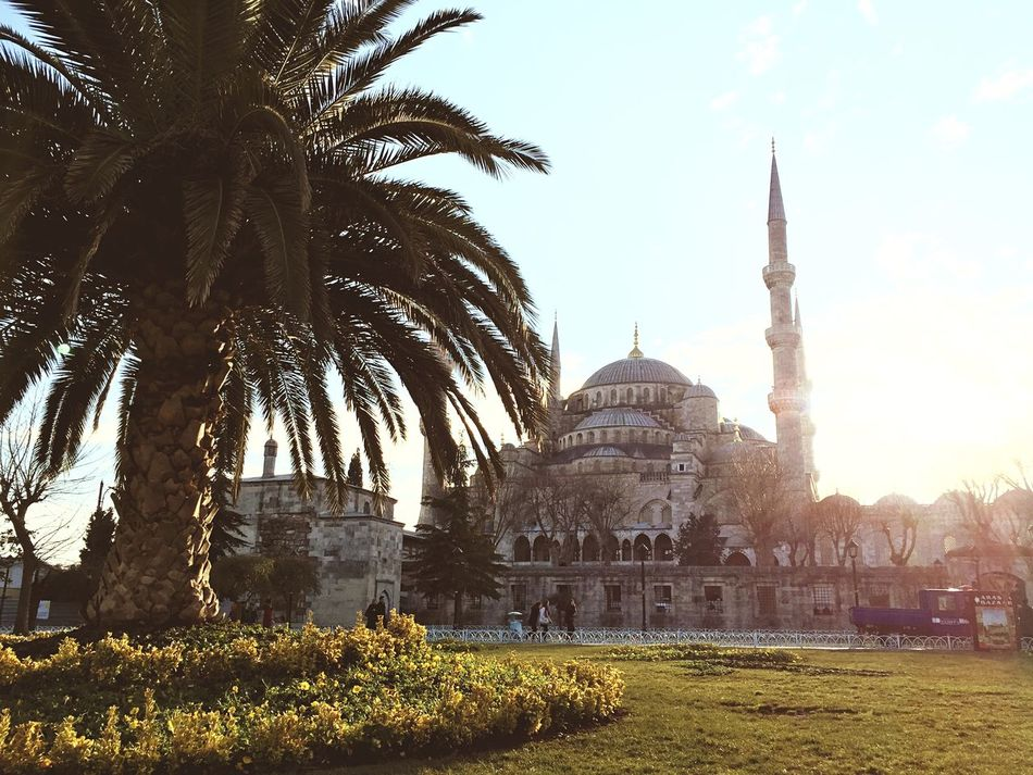 Beautiful stock photos of globe of earth, Architecture, Blue Mosque, Building Exterior, Built Structure