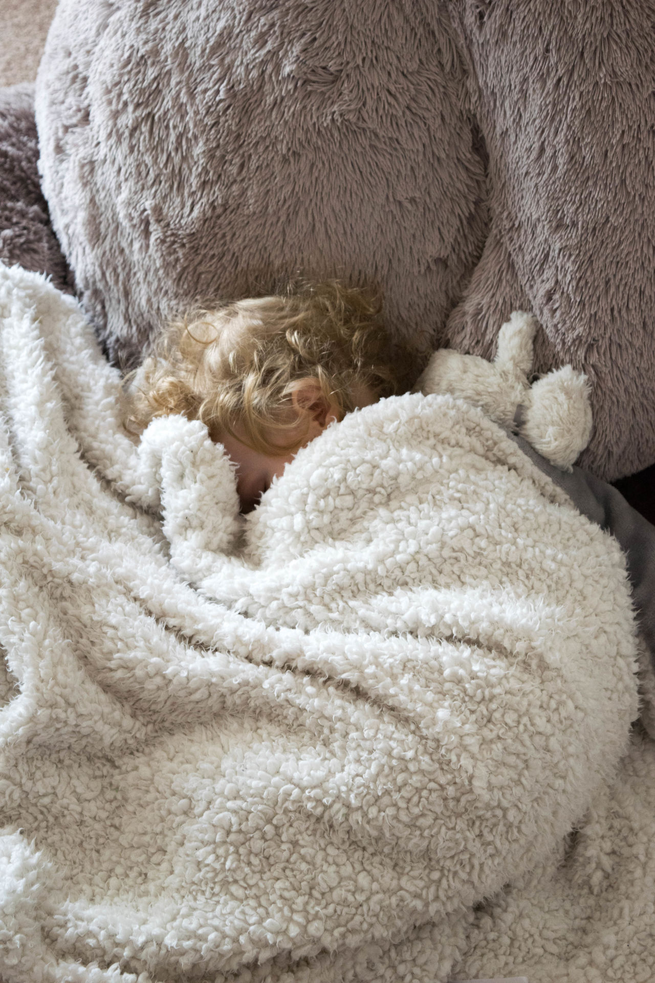 Bear Blanket Child Childhood Comfort Cuddle Curles Cute Day Indoors  Innocence Little Nap Naptime Precious Rest Sleep Small Snuggle Stuffed Bear Stuffed Toy Teddybear Tiny Toddler  Youth