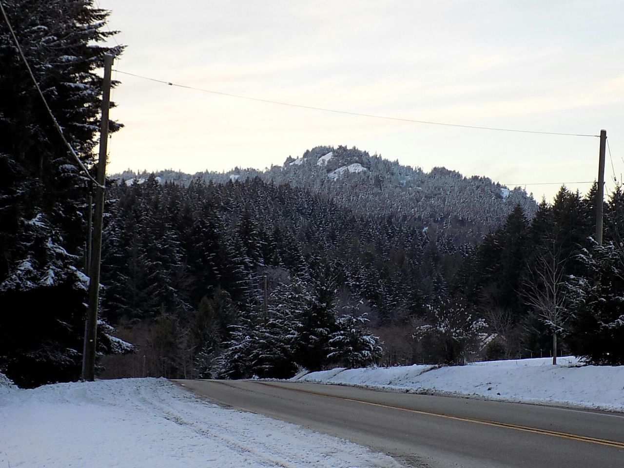 Afternoon drive Vancouverisland No Edits No Filters Tranquility EyeEm Best Shots - Nature Vancouver Island Canada EyeEm Gallery Pine Woodland Snow ❄ Snow❄⛄ My Year My View Outdoors Landscape Winter Landscapes