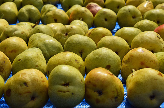 Fresh pears at fruit retail farmer market stall display Abundance Arranged Arrangement Display Farming Fresh Fruit Green Green Color In A Row Large Group Of Objects Market No People Order Pear Presentation Retail  Ripe Sale Side By Side Small Business Stall Store Supermarket The Shop Around The Corner