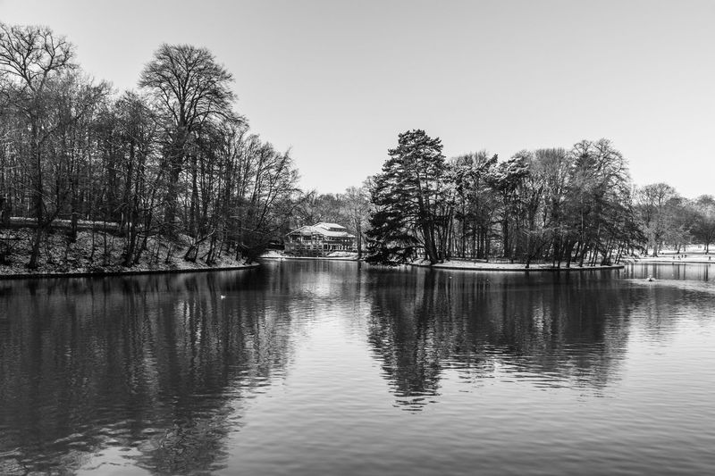 Black & White Black And White Black And White Photography Black&white Blackandwhite Blackandwhite Photography Blackandwhitephotography Bois De La Cambre Brussels Bruxelles Canon Canon_photos Canonphotography Day Hiver Lake Nature No People Outdoors Reflection Sky Tranquility Tree Vacations Water