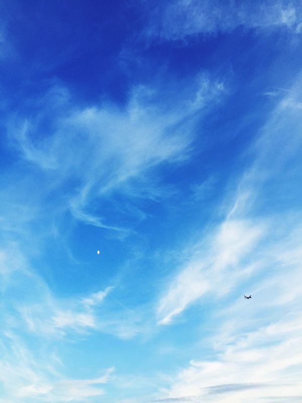 Learn & Shoot: Simplicity Beautiful Blue Sky Up Up And Away Airplane Air Travel  Heathrow, London Pmg_lon