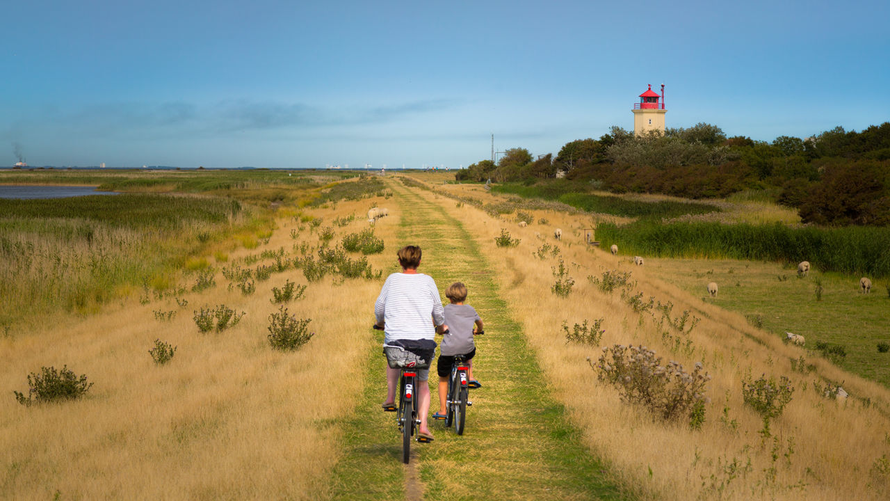 Beautiful stock photos of mother's day, Bicycle, Bonding, Boys, Built Structure