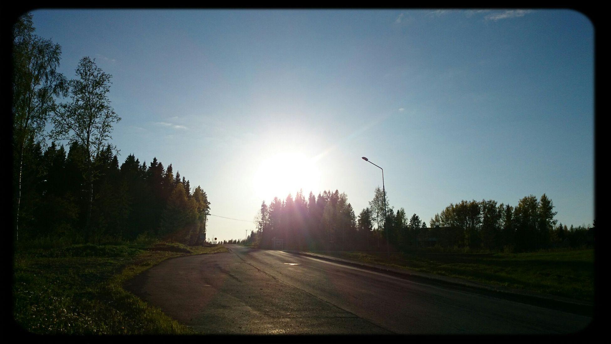 Evening Sun Kvällssol Sweden Jamtland