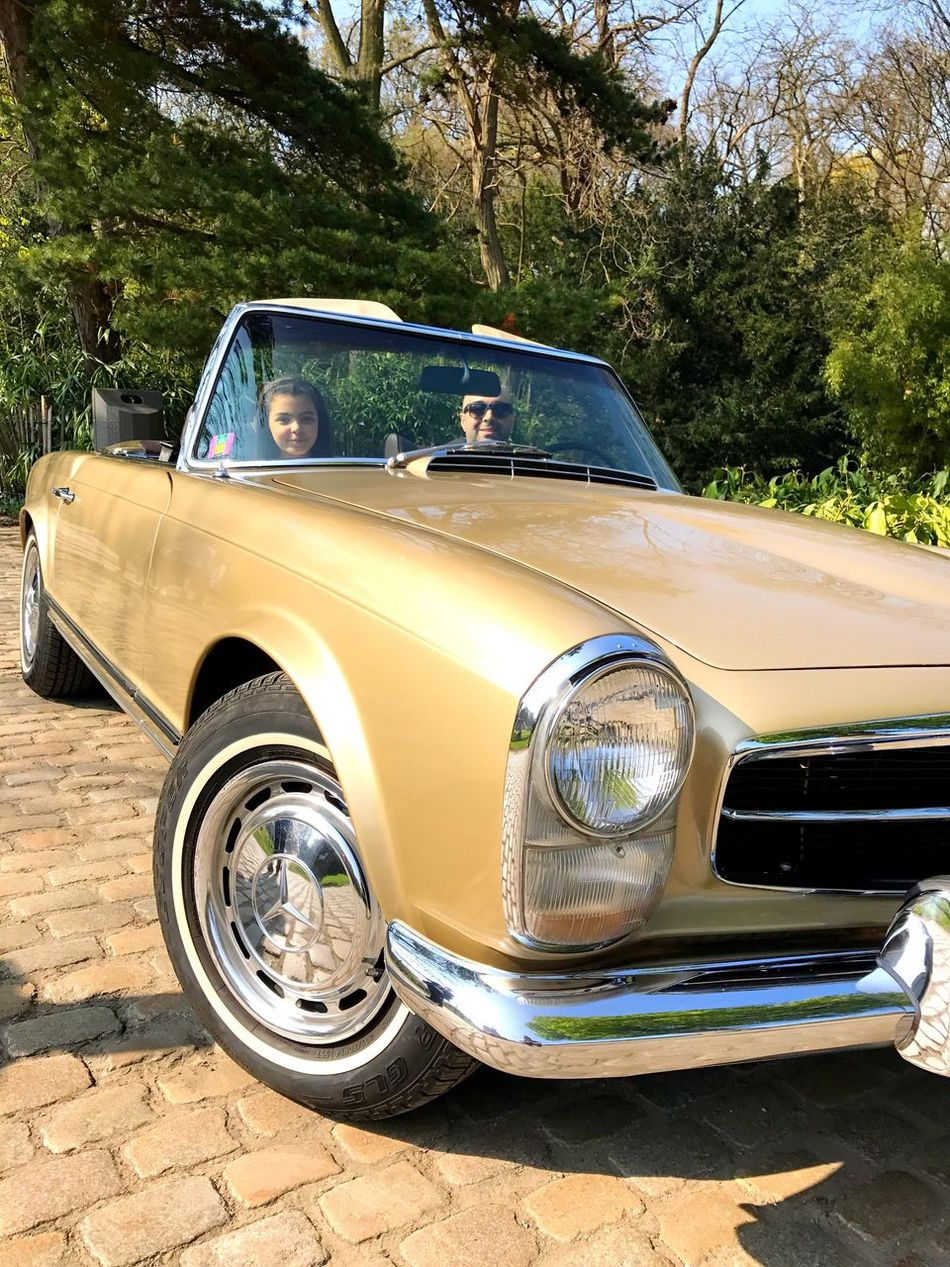 Old-fashioned Retro Styled Car Collector's Car Antique Transportation Land Vehicle Tree Outdoors Day No People Vehicle Breakdown Mercedes Pagode SL