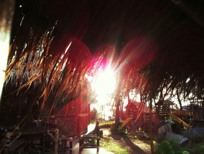 Sunset Fotodroids Omof