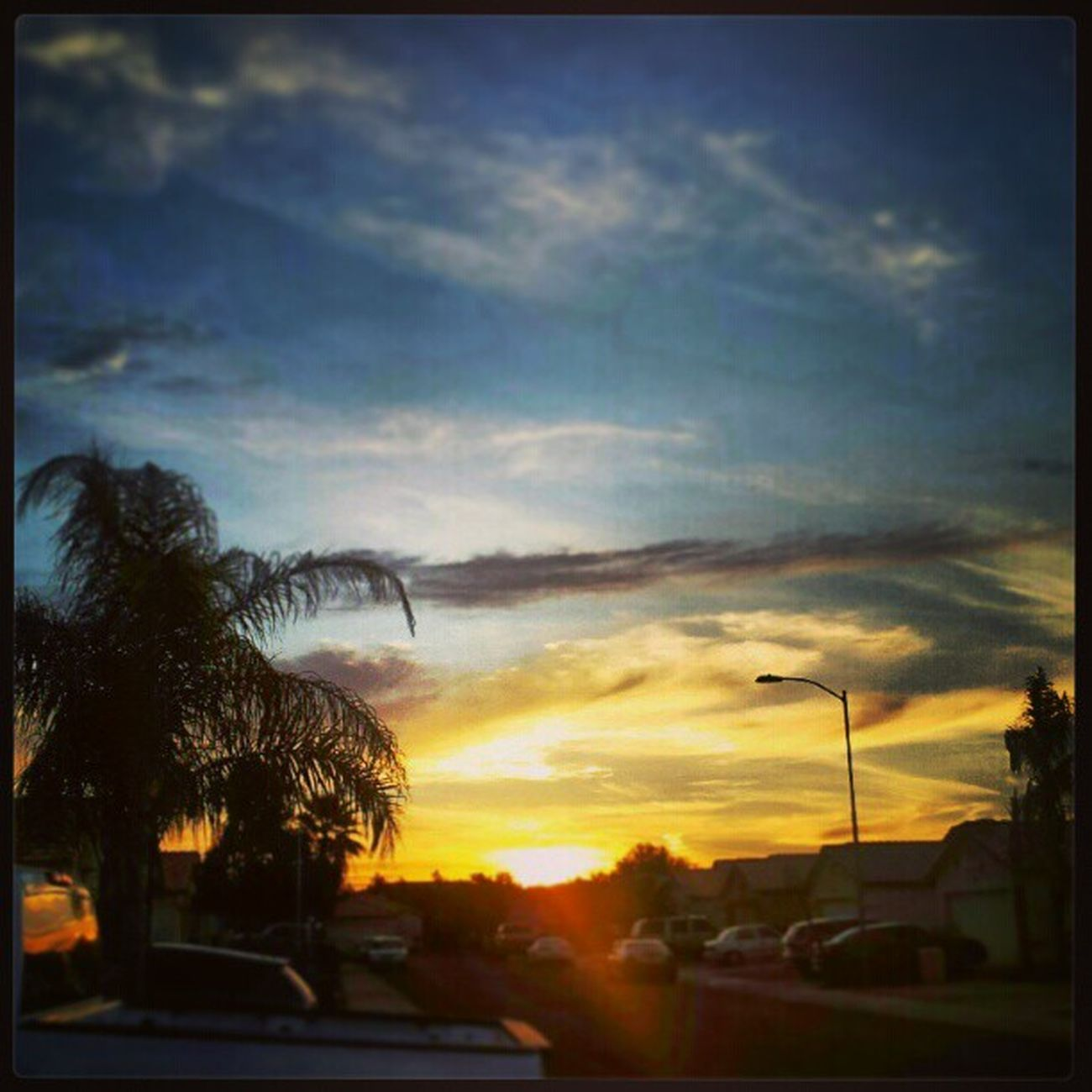 Instagramaz Glendaleaz Desertlivin Horizon Blueskies Clouds Palmtrees Sunrise @arizonaskies Sunrisegram Colorful Cloudydays Cloudporn Beautifulsundaymorning Lensflare Lightpole Natureisprettycool @____sun_rise_earth_____ @ibeautyofnature