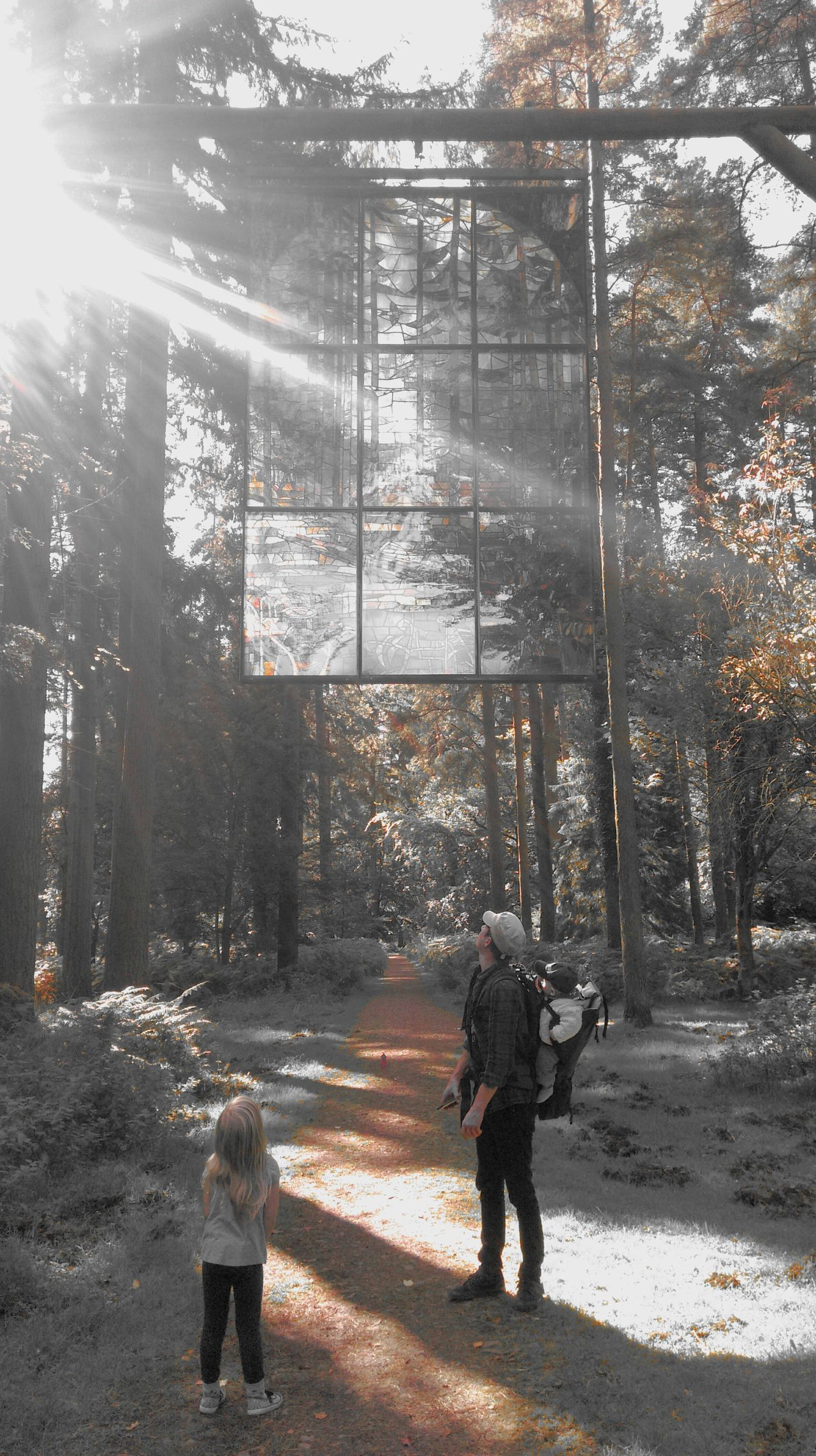 People Full Length Day Outdoors Family Nature Forest WoodLand Sunlight Beauty In Nature Stained Glass Stained Glass Window BYOPaper!
