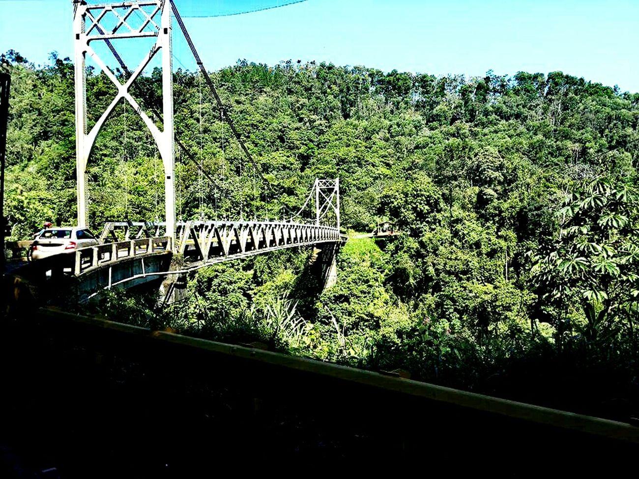 Bridge View Costa Rica Allgreen Pura Vida ✌