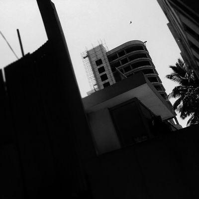 Instacapture Bloggius Hucciofficial Amazing abstract hosteltime coffeeyouneed instaabstract instagood capture clicks instablackandwhite blackandwhite blackwhite Building Buildings Instabuildings instabuilding instaeagle