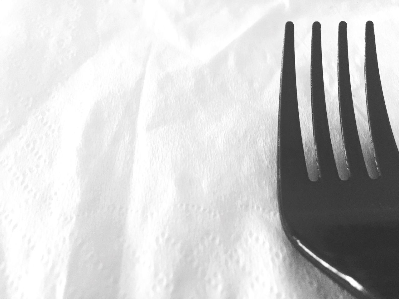 fork, no people, winter, snow, cold temperature, close-up, indoors, day, food