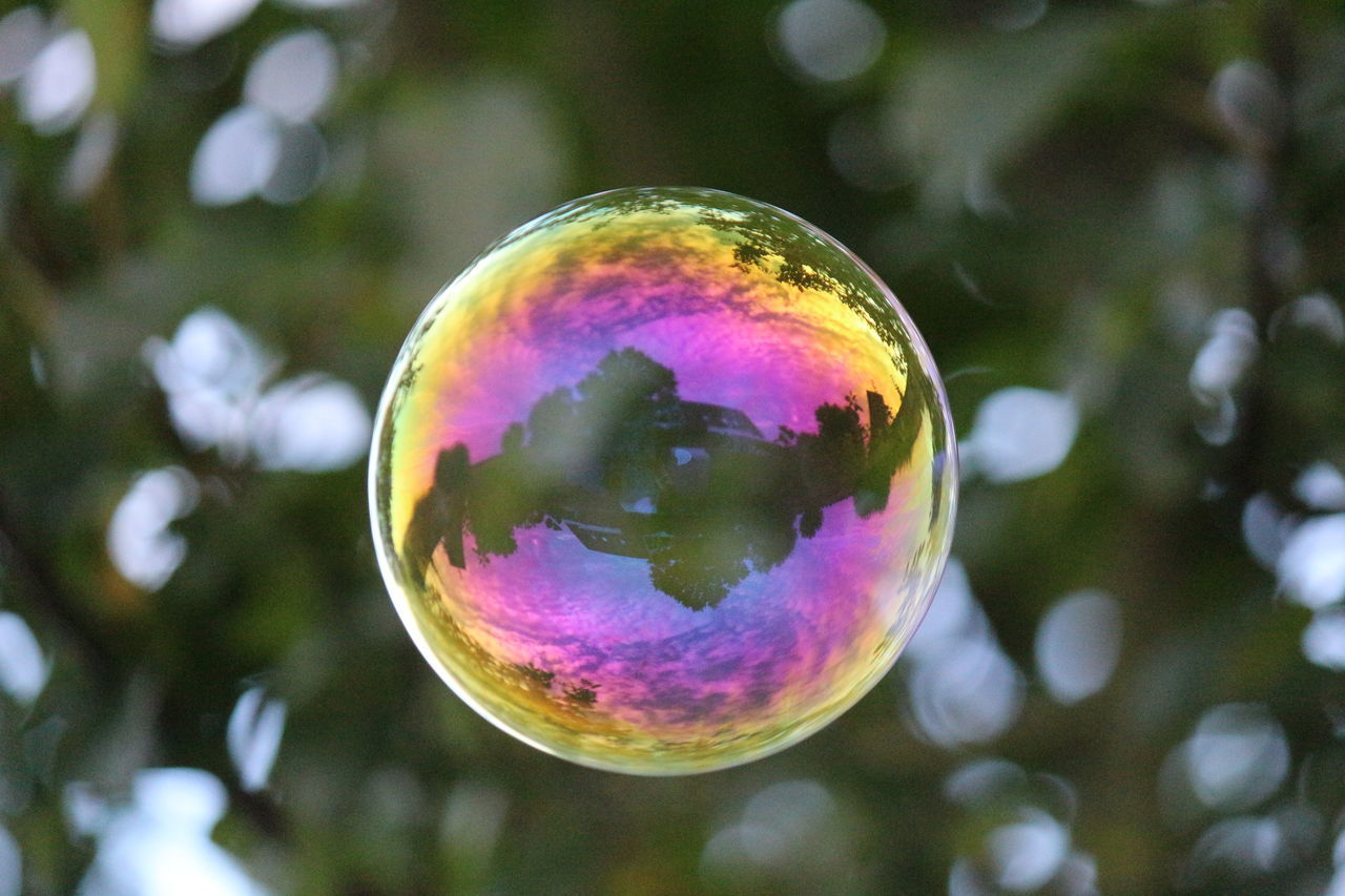 soap bubble reflecting parts of my garden🇩🇪 Multi Colored Soap Bubble In The Sky Fun Bubble Outdoors No People Celebration Fragility Nature Low Angle View Tree Close-up Day Refraction Beauty In Nature EyeEmNewHere EyeEm Gallery EyeEm Selects Sunny Day Clouds And Sky Purple Color