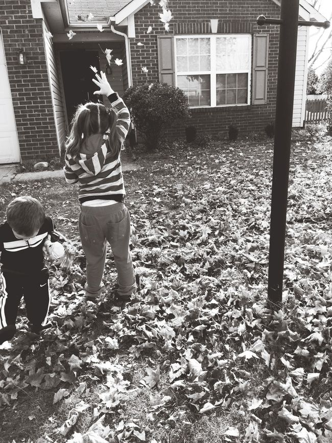 Fall Beauty Fall In Indiana Leaves Are Falling Autism It's The Little Things