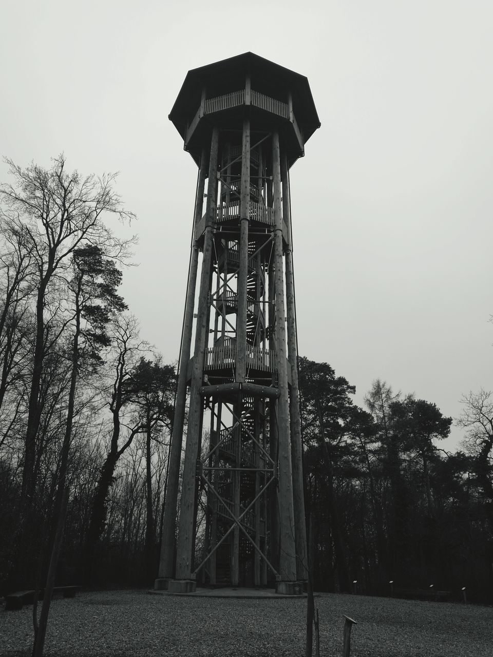 tree, built structure, architecture, outdoors, low angle view, lookout tower, day, sky, no people, nature, water tower - storage tank, clear sky, water