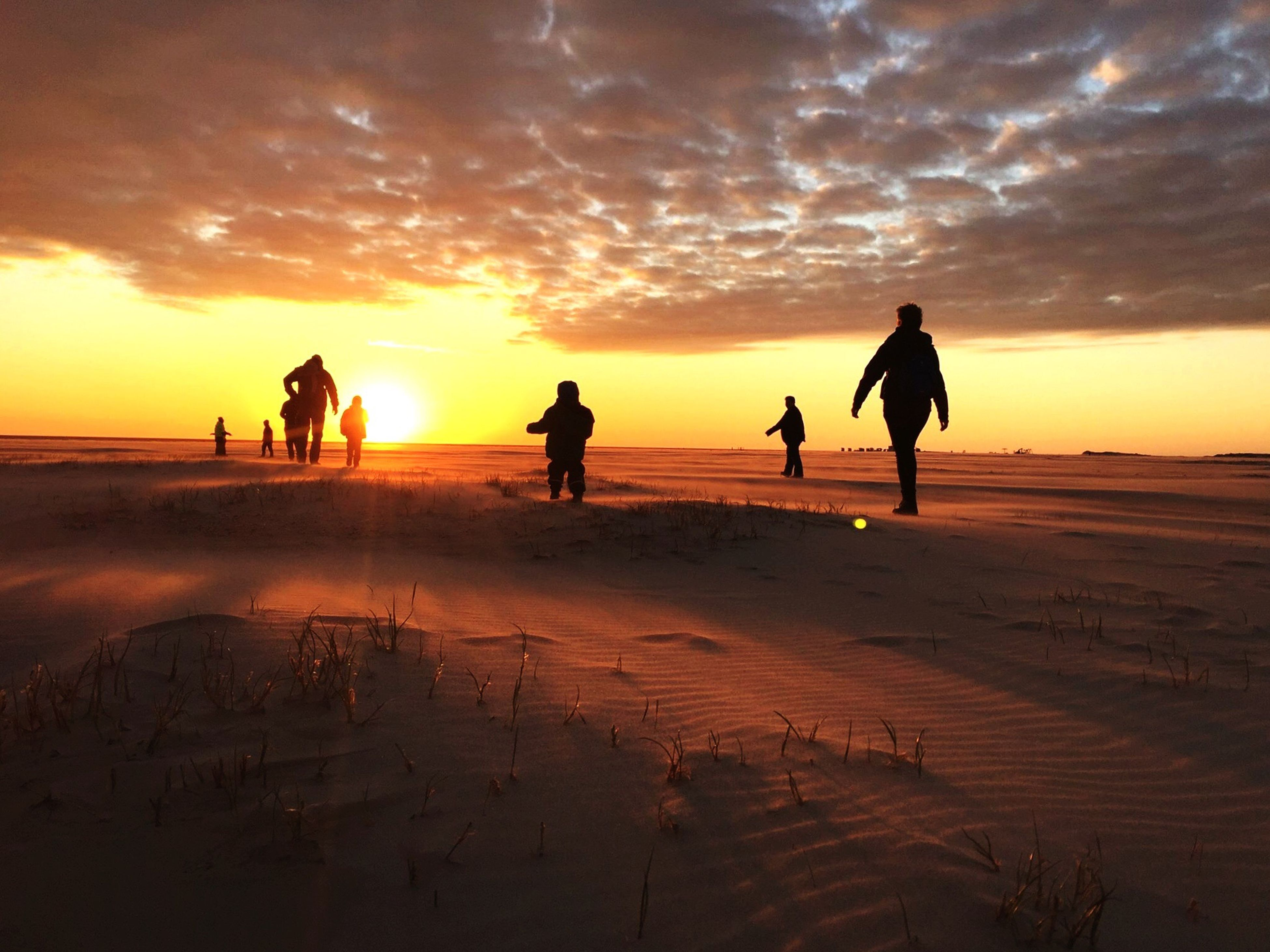 sunset, beach, silhouette, sky, lifestyles, men, leisure activity, orange color, sea, full length, cloud - sky, sand, shore, walking, togetherness, vacations, standing, person