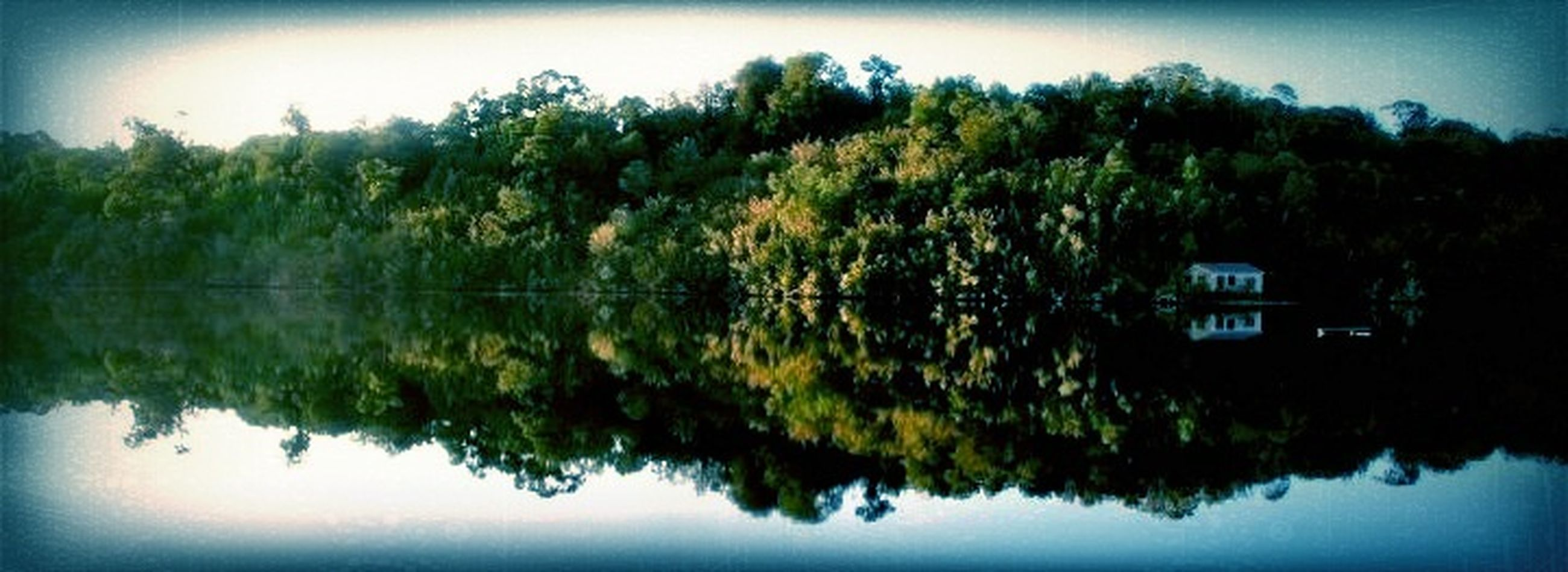 reflection, water, lake, tranquil scene, tranquility, tree, scenics, waterfront, sky, beauty in nature, standing water, nature, calm, idyllic, auto post production filter, growth, outdoors, no people, non-urban scene, blue