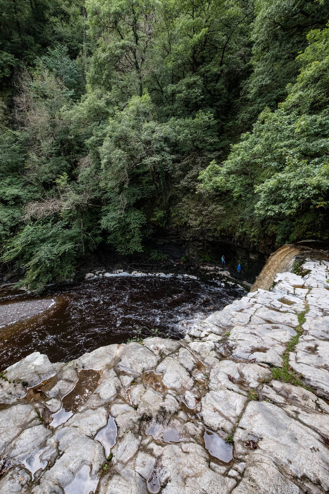Afon Pyrddin Autumn Beauty In Nature Day Flowing Green Color Lady's Falls Landscape Nature Non-urban Scene Outdoors Pontneddfechan Powys Remote Scenics Sgŵd Gwladus Tranquil Scene Tranquility Tree Water Waterfall WoodLand