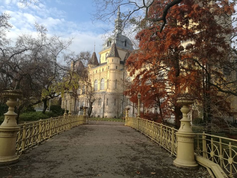 Nofilter Original Castle Budapest Nature Mate8