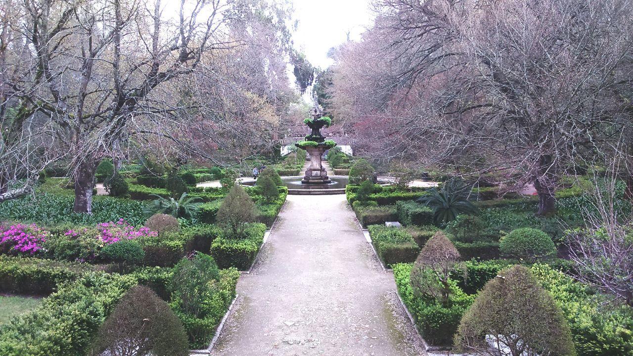 Garden Fountain Paths Trees Trees And Bushes Nature Old Garden Coimbra Jardim Botanico De Coimbra EyeEmNewHere No People Tranquility