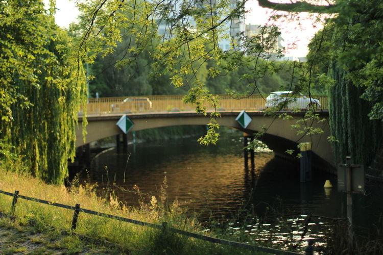 Summer Spree River Berlin Water Outdoors Nature No People Bridge