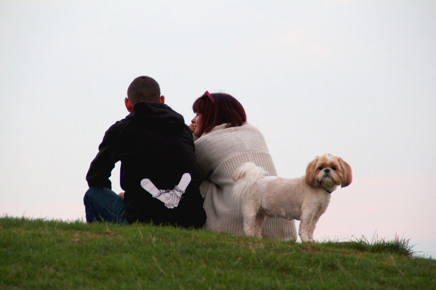 Grass Domestic Animals One Animal Mammal Togetherness Sitting Field Full Length Dog Casual Clothing Friendship Pets Livestock Person Loyalty Affectionate Copy Space Outdoors Lifestyles Neverstopexploring  Animal Photography Perspective Day Animal Themes Partnersincrime
