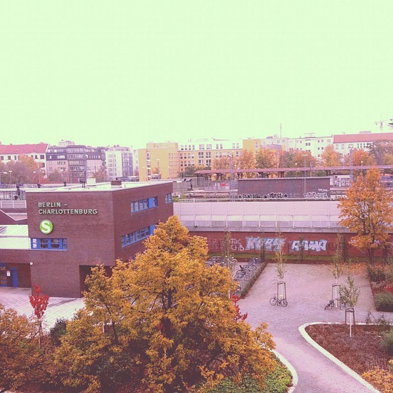 Guten Morgen Charlottenburg!