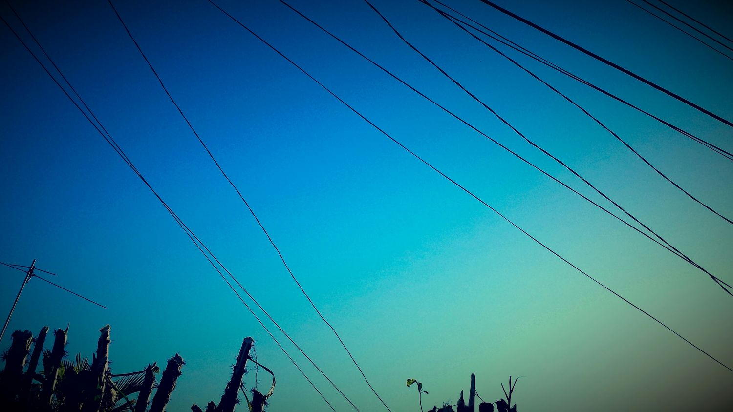 Cables & Skies Check This Out Relaxing Vintage S4 Sunrise