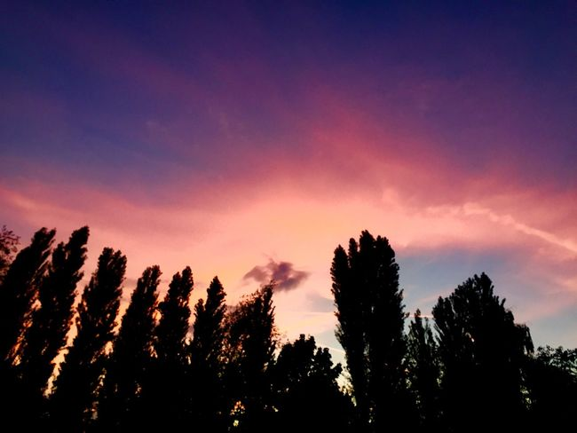 EyeEmbestshots Nature EyeEm Gallery Nature_collection Sunset #sun #clouds #skylovers #sky #nature #beautifulinnature #naturalbeauty #photography #landscape Sunset_collection EyeEmSwiss EyeEm Nature Lover Eye4photography  Switzerland