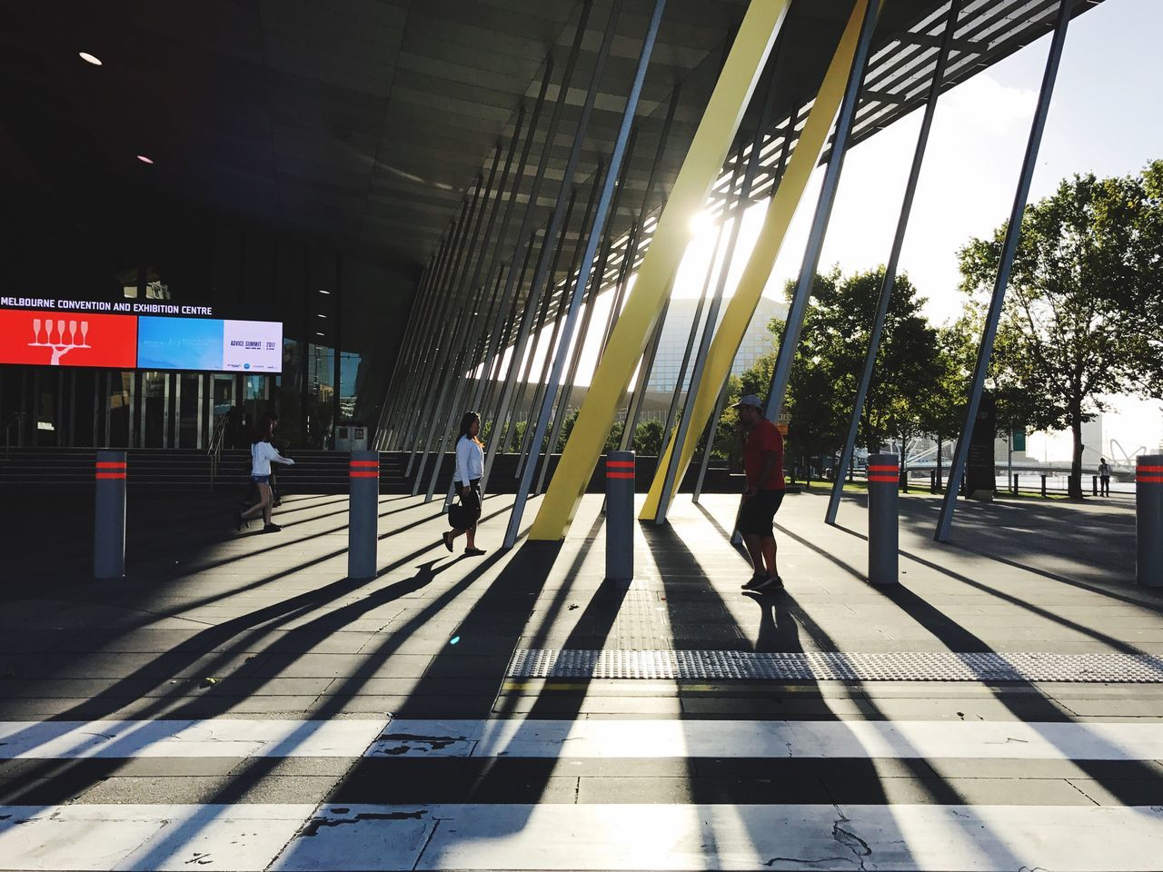 Adapted To The City | Everybodystreet | Yesterday Afternoon Light