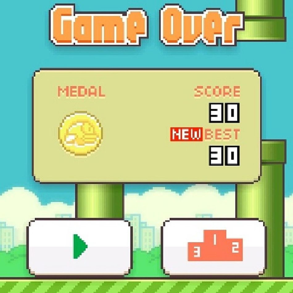 YES!! Best score ever!! Bestflappybirdscoreever Flappybird Game Champion score
