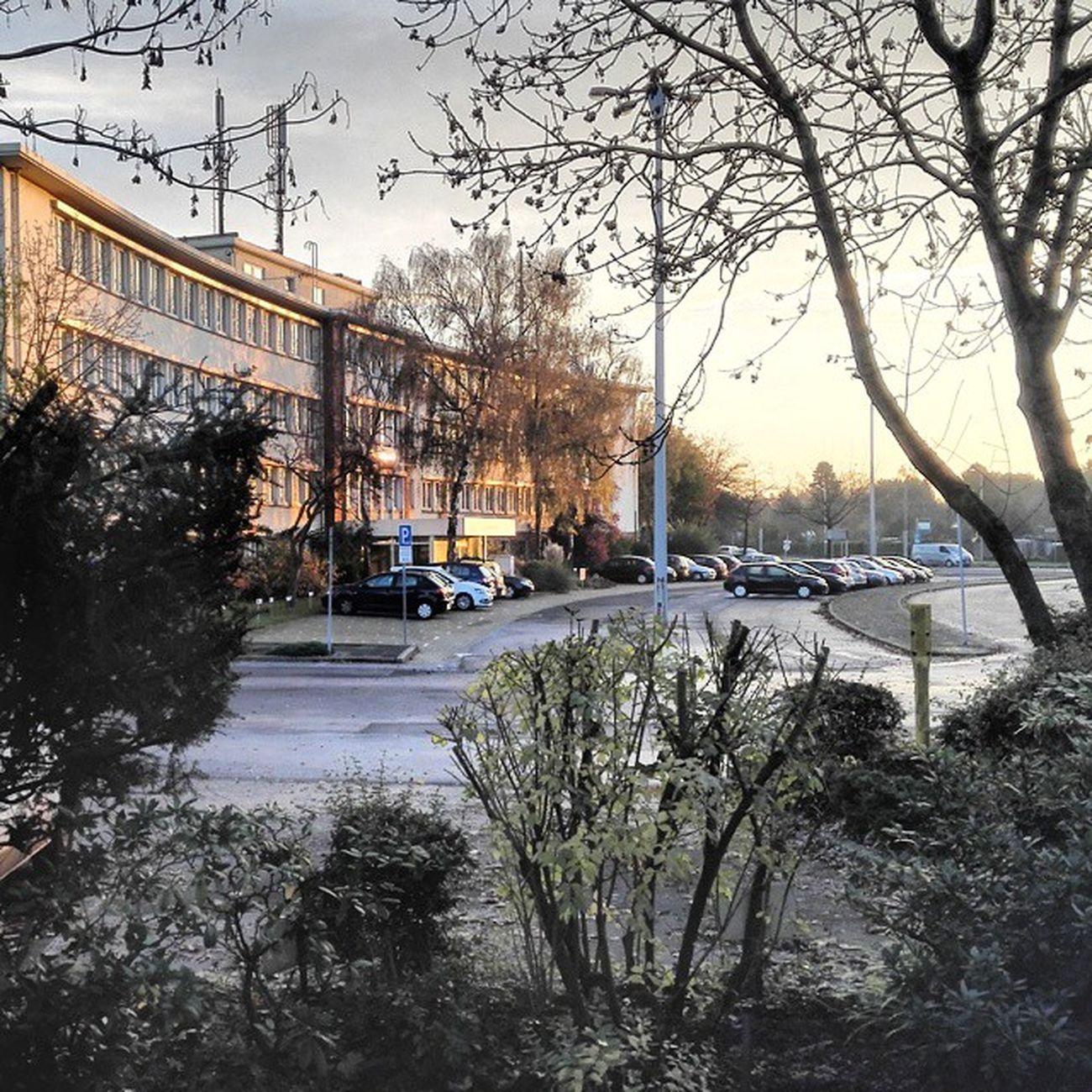 Morgens in KrefeldLinn Krefeld Linn