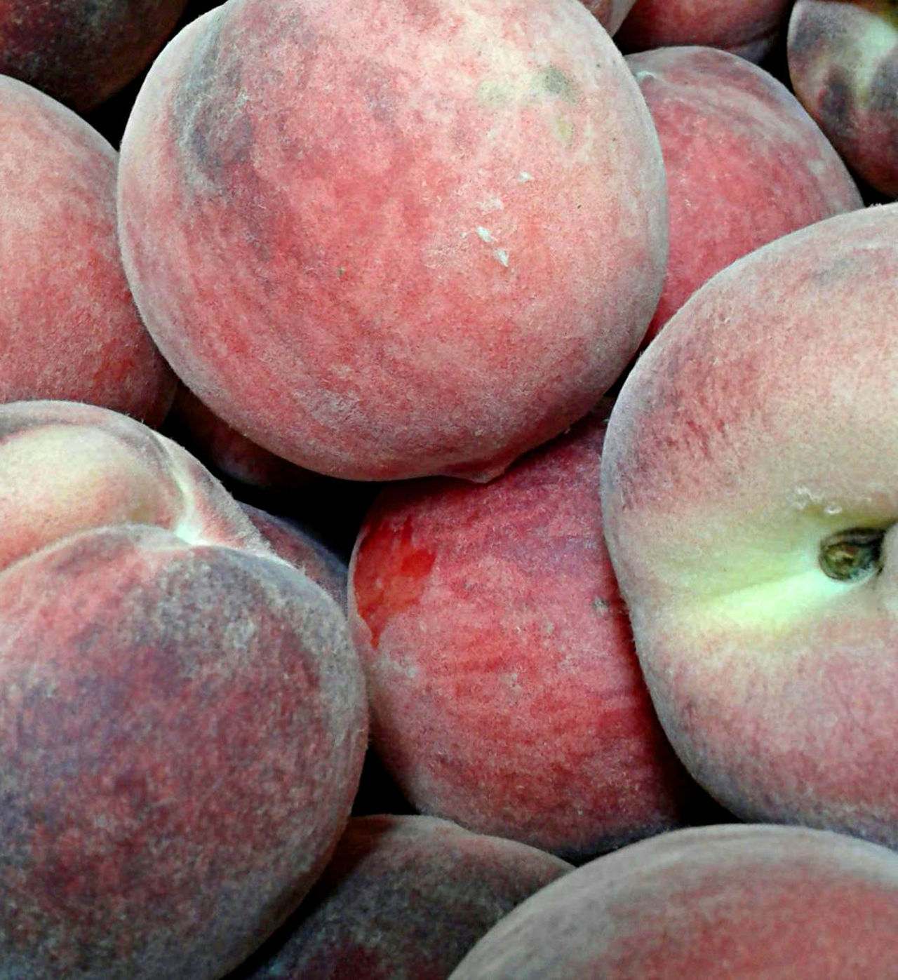 Fresh ripe peaches in the summer. Close-up Food Freshness Fruit Full Frame Healthy Eating Large Group Of Objects No People Peaches Red Summer Fruits Supermarket