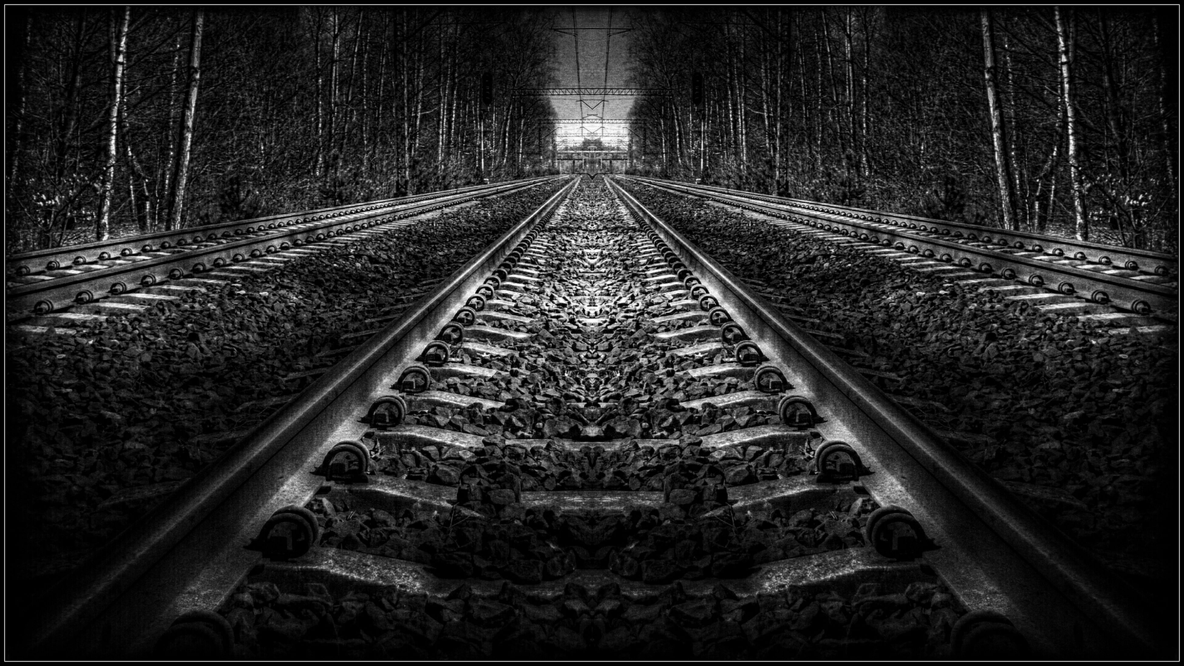 railroad track, the way forward, diminishing perspective, vanishing point, rail transportation, transportation, tree, forest, straight, railway track, long, auto post production filter, metal, no people, day, connection, surface level, outdoors, nature, transfer print