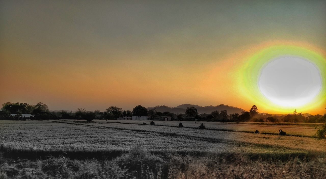 Nature Field Beauty In Nature Tranquil Scene Tranquility Rural Scene Outdoors Scenics Landscape Sunset No People Sky Agriculture Cloud - Sky Snapseed Eyeemphotography EyeEm Gallery India Punediaries Sunlight Oneplus2 Oneplusphotography Edited Hillside Agriculture Photography