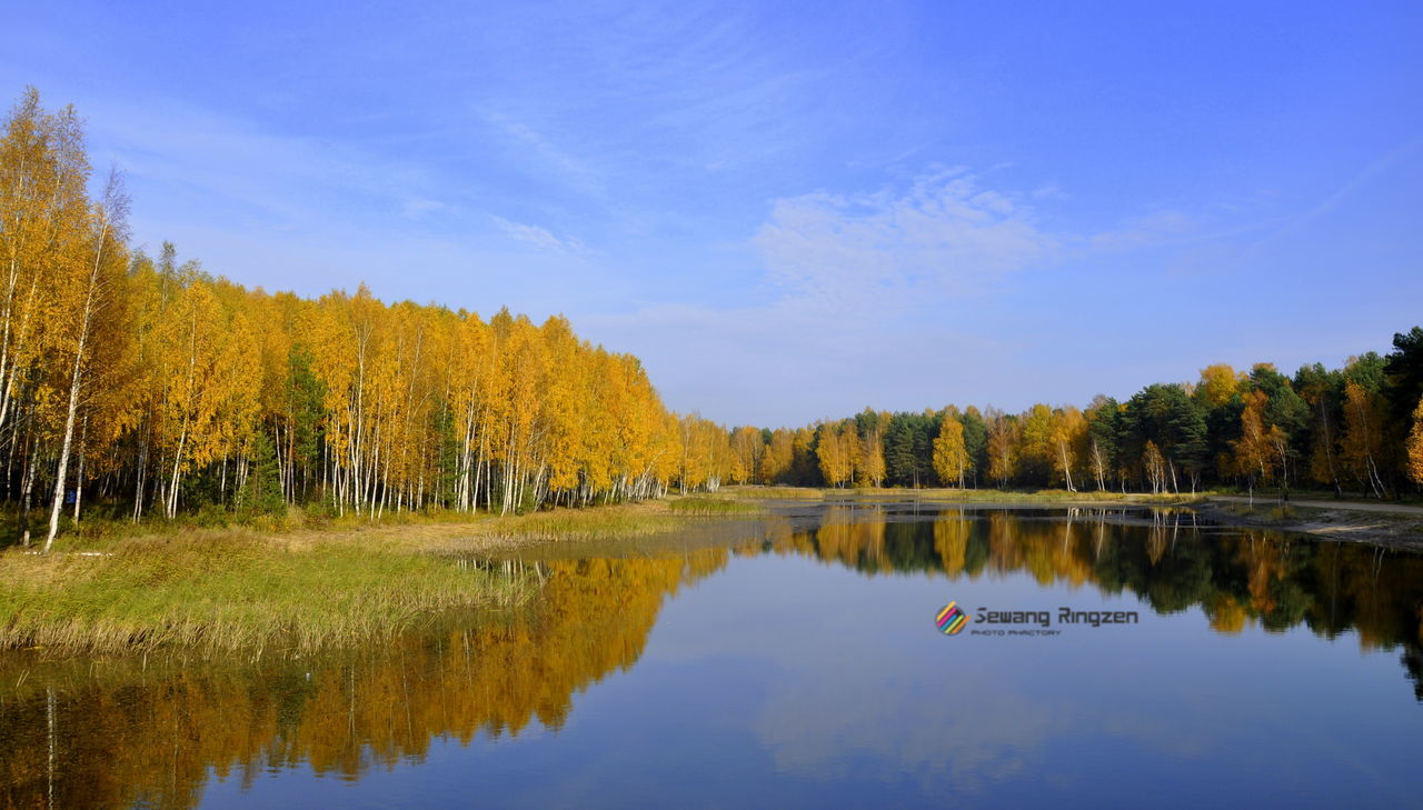 Photooftheday Colours Of Autumn Smolensk Russia