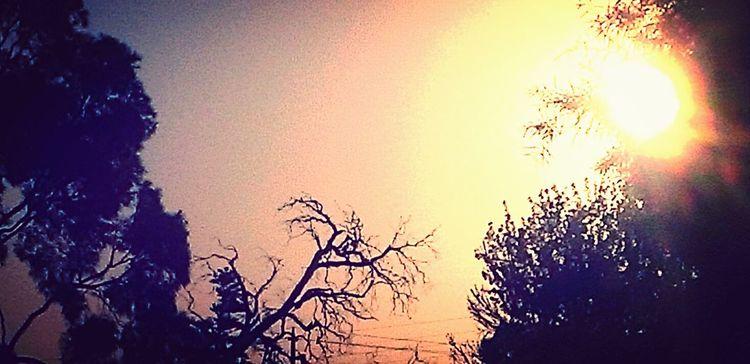 Enjoying The Sun HTC 8X