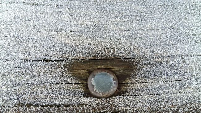Bench Frost Frosty Morning Freeze Like A Coconut