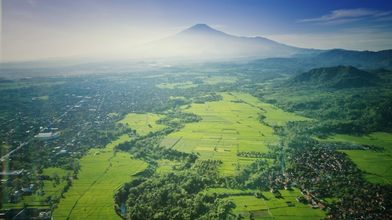 The Great Outdoors - 2017 EyeEm Awards Landscape Field Agriculture Nature Scenics Tree Mountain Outdoors Beauty In Nature Rice Paddy Sunrise Colors Drone  Dronephotography Aerial Photography Aerial INDONESIA No People Aerial View Rural Scene West Java  Terraced Field High Angle View Freshness