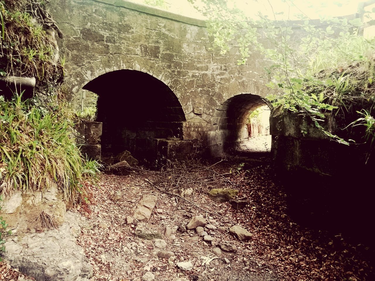 Rosslyn Glen Gunpowder Mill Architecture Built Structure Day No People Building Exterior Outdoors Reclaimed By Nature Abandoned & Derelict Ruins Ruins Architecture Tree Sunlight Growth Ruins Of A Past Bridges Tunnel Vision Tunnel View Which Direction? The Great Outdoors - 2017 EyeEm Awards