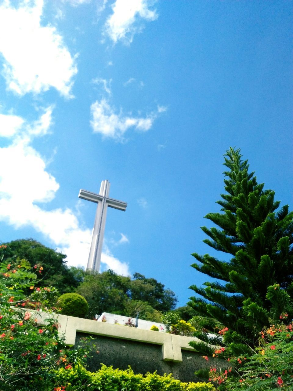 cross, tree, religion, spirituality, no people, day, sky, low angle view, blue, architecture, outdoors, nature
