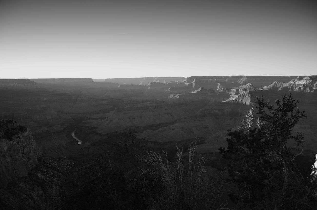 Arizona Beauty Beauty Of Decay Black And White Canyon Erosion Geography Grand Canyon Landscape Nature Outdoors Rock Sony A37 Travel Tree