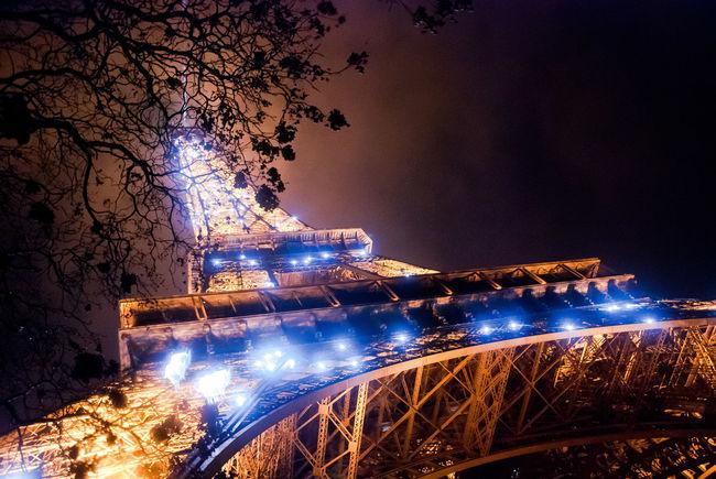 City Life Eiffel Tower Famous Place Famous Places Glow Illuminated International Landmark Lighting Night Paris Tourism Travel Travel Destinations Tree