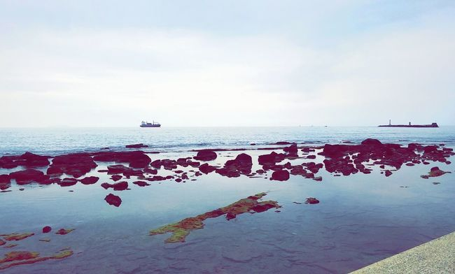 Livorno Nature Mare Sea Nuvoloso Scogli