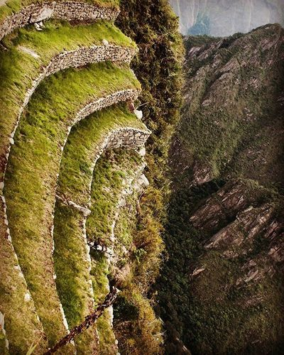 MachuPicchu Peru Aguascalientes Altitud Arquitectura Inca Verde Montana Huaynapicchu Nature Awesome Travel Panoramic Terrazas Canon Canonphotography The Architect - 2016 EyeEm Awards EyeEm The Best Shots EyeEmBestEdits EyeEm Team EyeEm Best Shots - Architecture Photooftheday Picoftheday Photography Fotografia