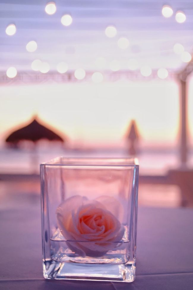 It's all in the details. Soothing a destination wedding on the beach in Aruba. Documentary Photojournalism EyeEm Best Shots Sky Outdoors Roses Glass Sunset Lights Wedding Beach Reception Aruba Fine Art Photography