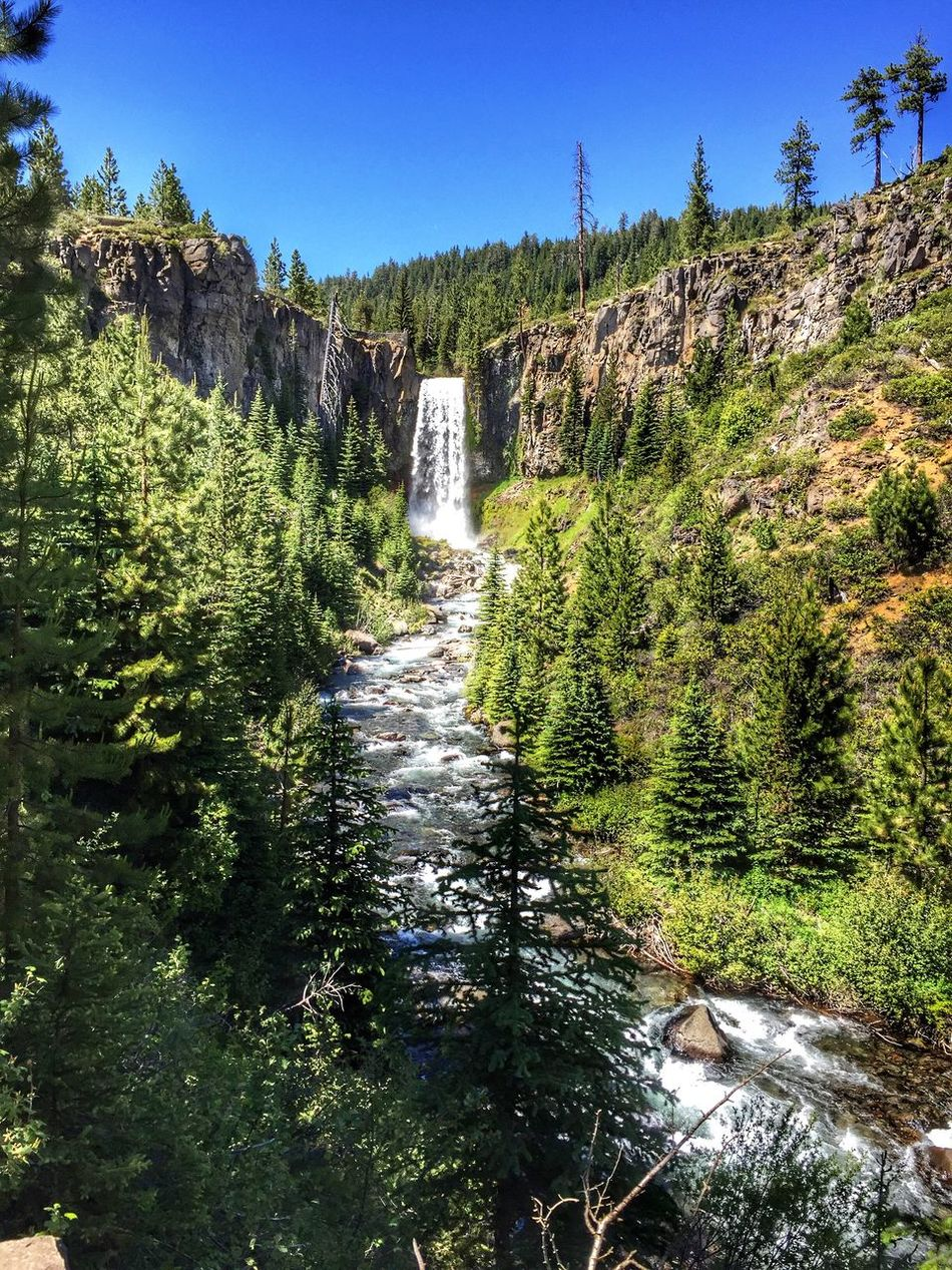 Gold Rush Trail Oregon Waterfall Nature Adventure Traveling