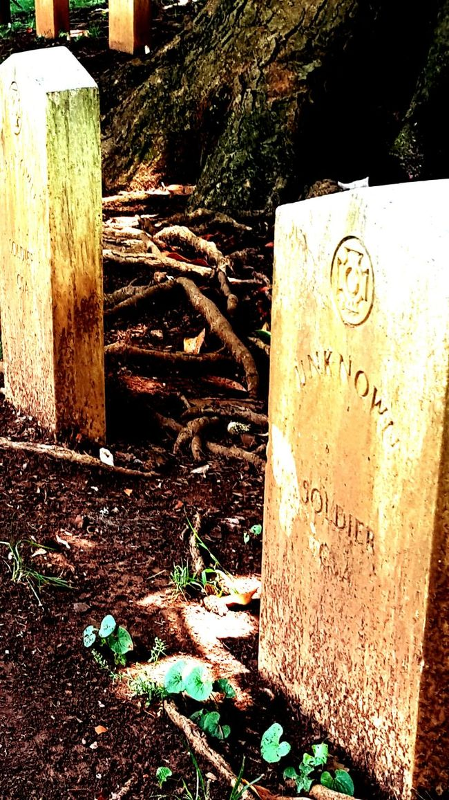 Maple Hill Graveyard Civil War