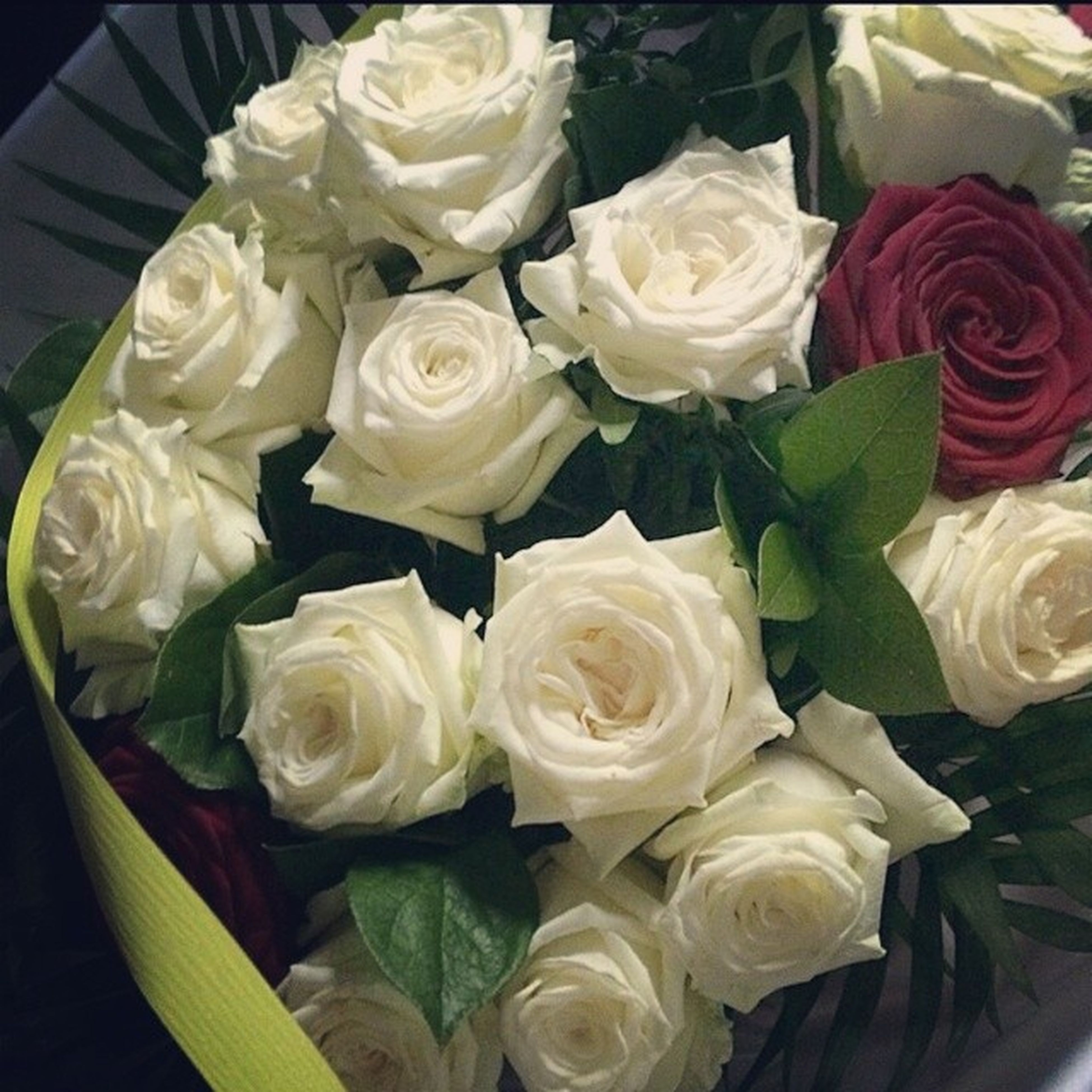 flower, rose - flower, freshness, petal, fragility, flower head, indoors, rose, beauty in nature, bouquet, bunch of flowers, high angle view, close-up, vase, white color, growth, nature, flower arrangement, blooming, variation