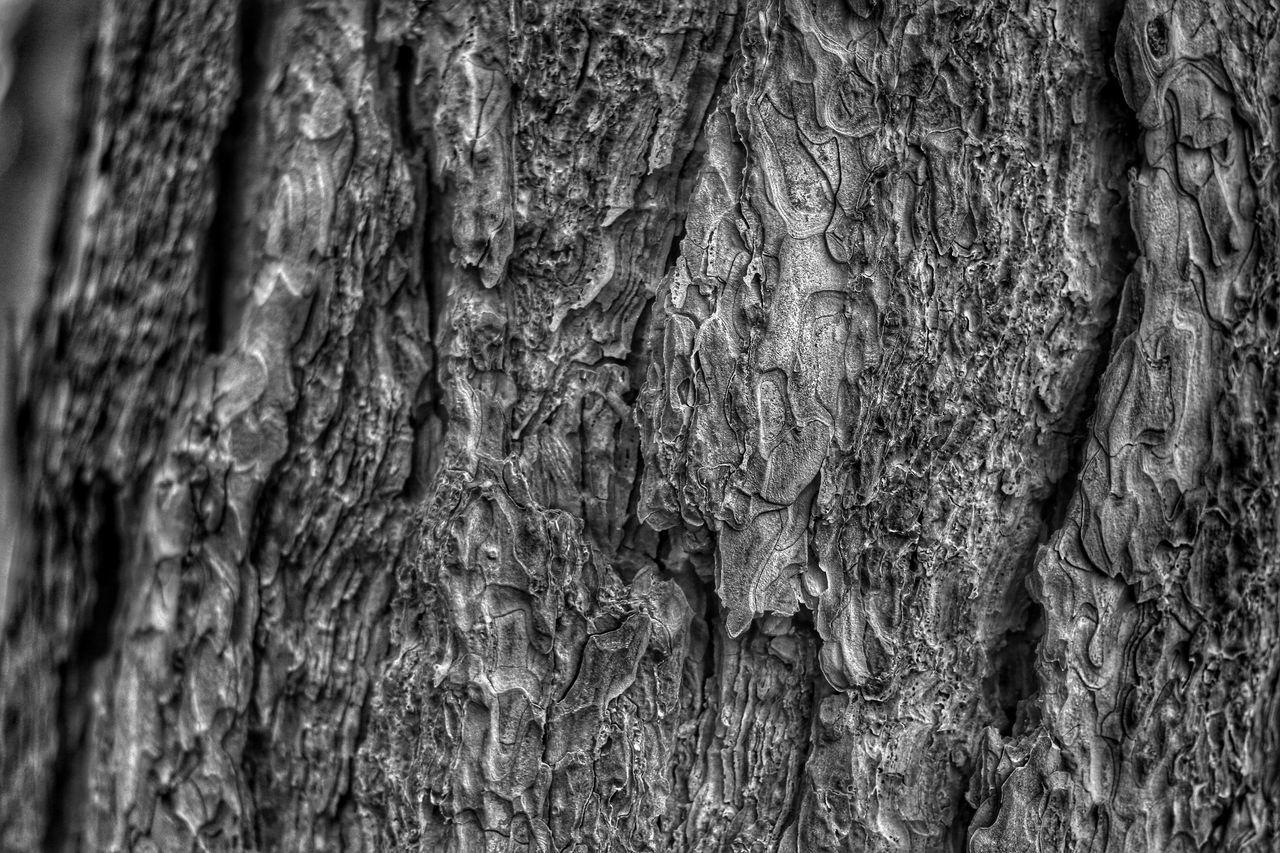Detail Shot Of Rough Surface